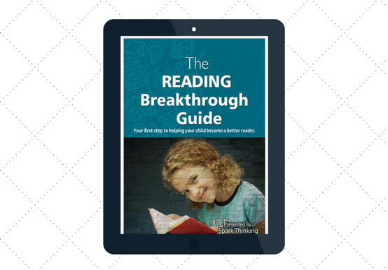Summer Program_The Reading Breakthrough Guide